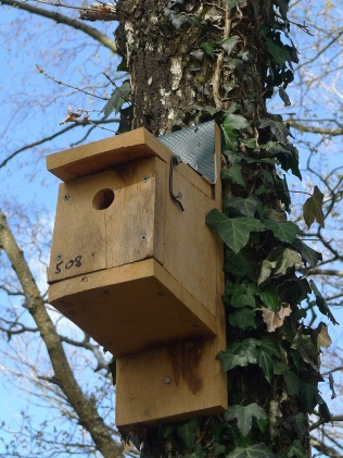 Each of the 250 nestboxes at the Reserve is numbered