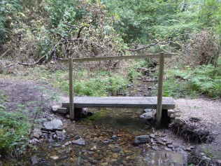 Bridge before (Robyn Owen)