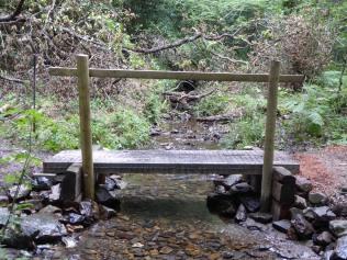 Bridge after (Robyn owen)