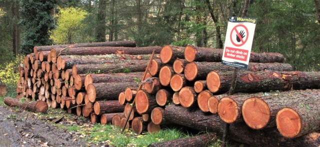 timber-stack