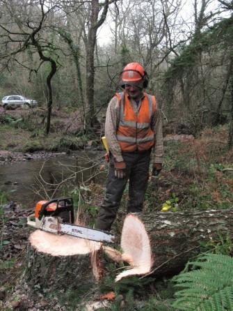 Barry after felling a Douglas fir