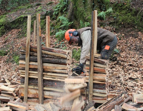 Barry Green producing firewood with an ingenious low-tech solution