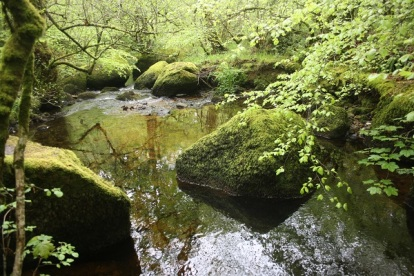 The magical Becka Brook