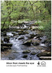 Research paper on the barbastelle bat