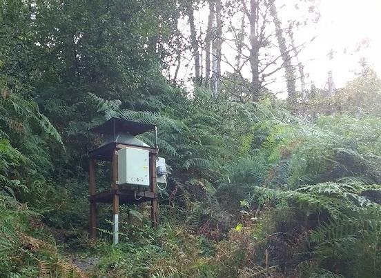 Rothamsted Trap at Yarner Wood