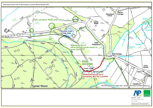 Dam work at Yarner Wood-map and access