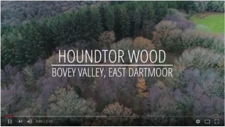 Title sequence for drone footage of Houndtor Wood and the Bovey Valley
