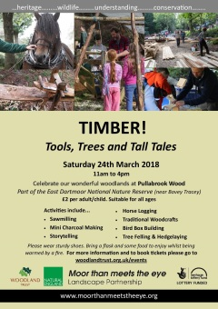 2018 TIMBER! A4 FINAL +storytelling-page-jpg