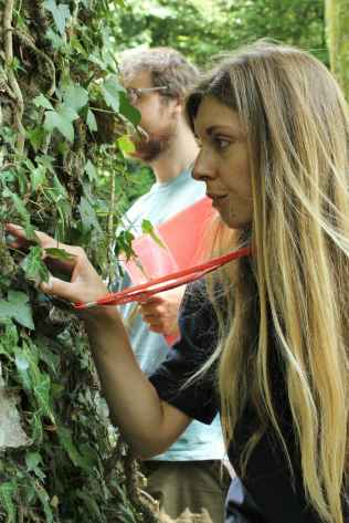 The watchful eye of an expert – Alison from Plantlife
