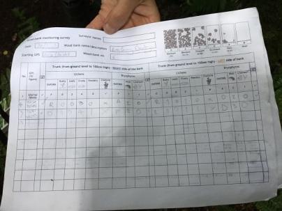 July 2018 Survey sheet for lihens along wood banks 600 px wide_James L-K